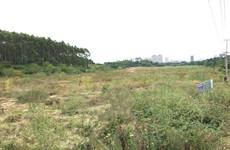 良庆区良凤江森林公园往大王滩方向11公里处57亩农业用地