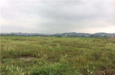(已成交)良庆区那马镇共和路竹泉岛景区旁约80亩土地招租