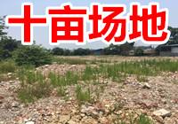 江南沙井片区三津那踏坡10亩,约6600平独门独院空场地招租