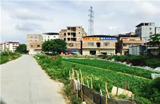 高新区丰达路尾300-650平砖混结构整栋临街商住楼、厂房仓库