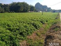 (已成交)伊岭岩对面2000一35000平52亩良田、场地