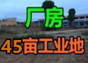 吴圩机场附近45亩工业用地、厂房6000平招租,项目合作转让