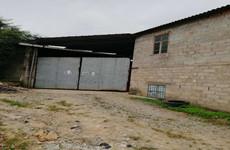 (已成交)兴宁区邕武路林科院附近350平砖混结构厂房仓库
