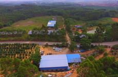 隆安县那桐镇10一200亩木材加工场地、及5000平厂房仓库