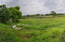 昆仑大道三塘十里花卉长廊15亩(约10000平米)现成场地