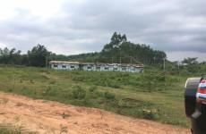 南宁市邕宁区二级公路旁40亩养殖场地出租