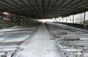 江南区附近多栋600-1000平厂房仓库、小型加工厂、养殖场招租
