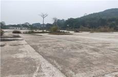 江南区江西镇大同坡50亩建设用地招租