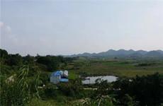 武鸣区48亩正在经营的农庄转让或出租