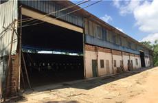 西乡塘高新区科园大道附近500-2300平厂房仓库、及3亩空场地