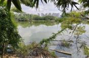 仅4000元/月,相思湖新区相思湖东路10亩鱼塘、150平房子招租