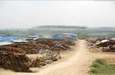 邕宁区中和镇新安村50亩厂房仓库、木材加工厂、刨板厂场地